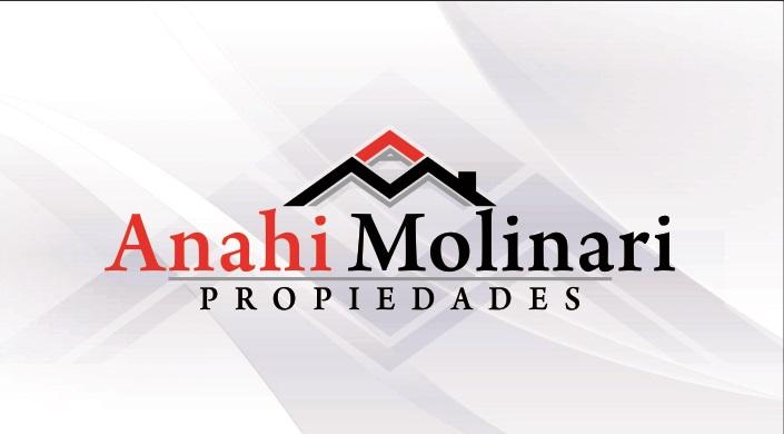 Logo de  Anahi Molinari Propiedades