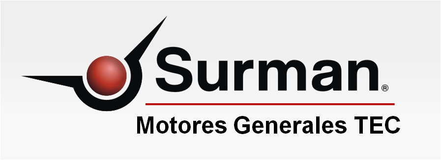 Ver más vehículos de Motoresgeneralessurmantec
